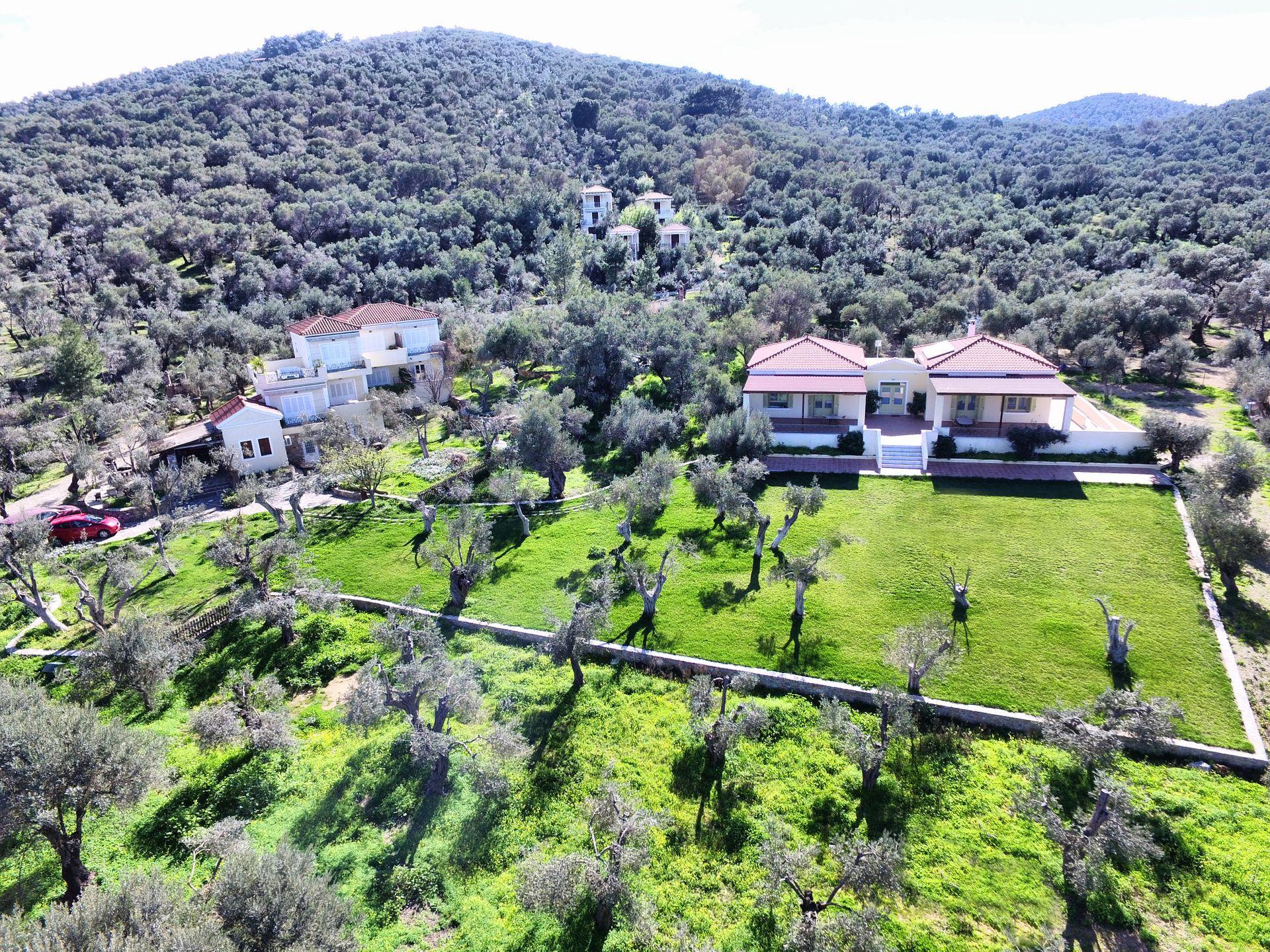 Gera's Olive Grove (Elaionas Tis Geras) - Μυτιλήνη